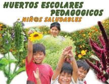 Pura vida manual virtual lago atitl n guatemala for Pura vida pdf